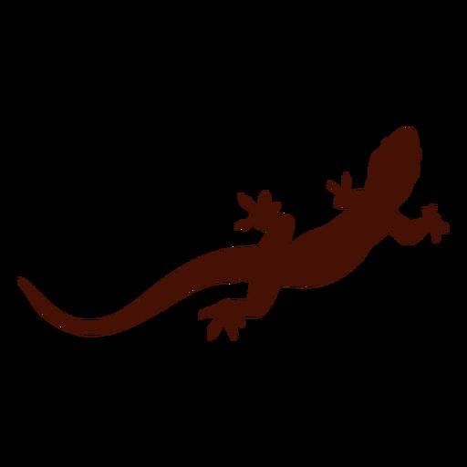 Iguana PNG - 23370