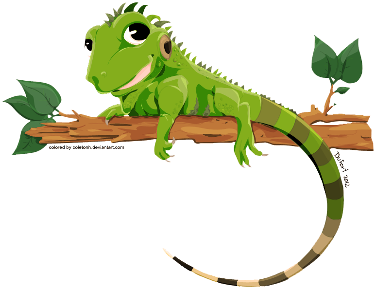 Iguana PNG - 23357