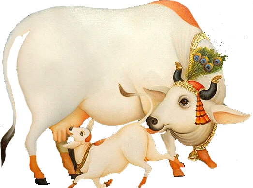 Kamdhenu Gau Shala - Indian Cow With Krishna PNG