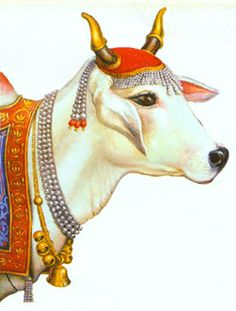 Indian Cow With Krishna PNG - 68420