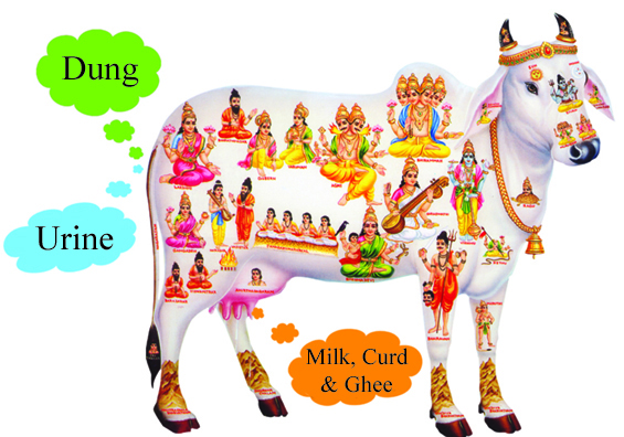 Indian Cow With Krishna PNG - 68422