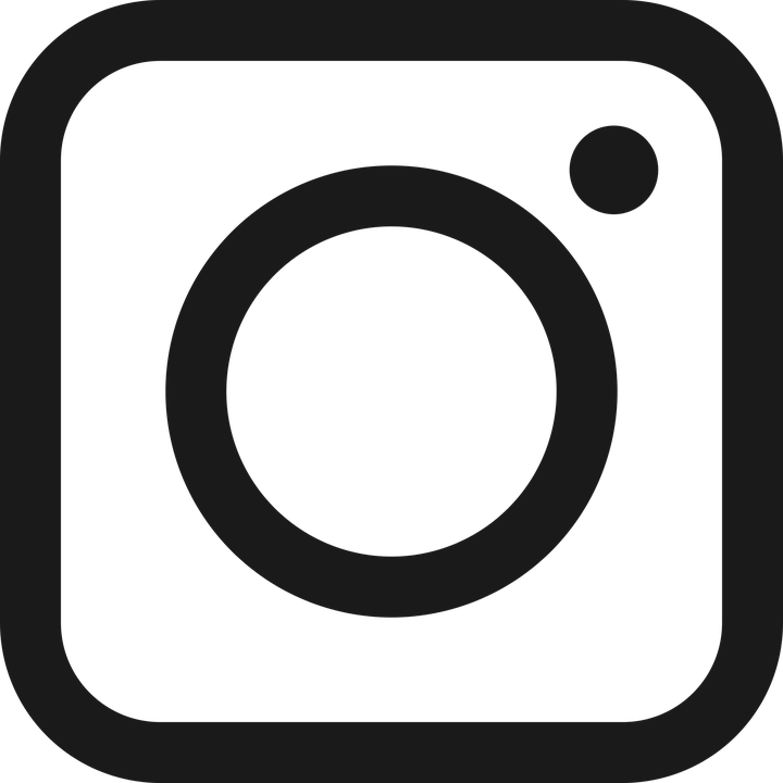 Instagram flat icon circle ve