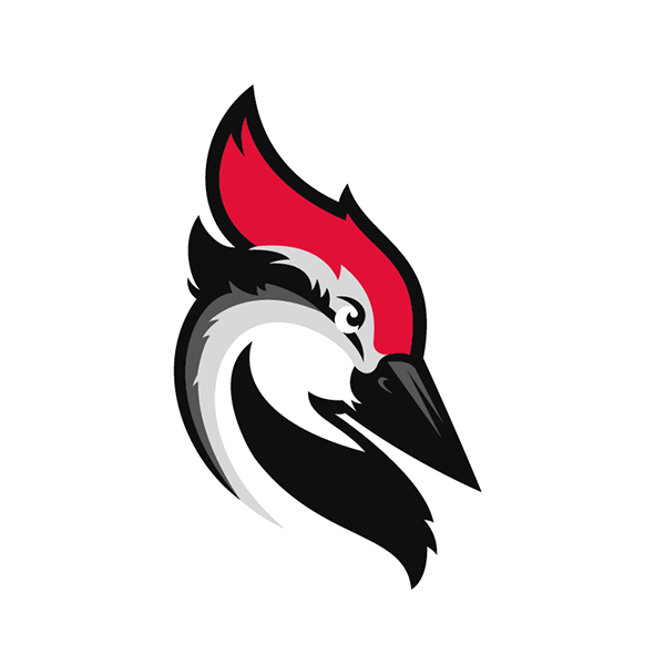 Integrate Woodpecker with your favorite apps via PieSync - Woodpecker PNG