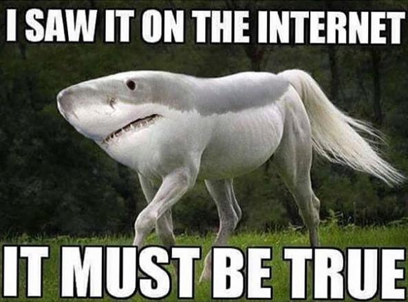 Internet Meme PNG - 8171