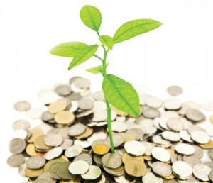 diaspora investing - Investing PNG