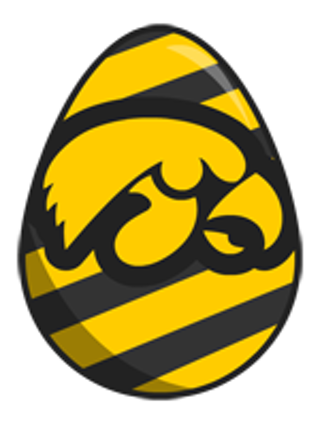 ~~Iowa Hawkeye Egg Cross Stitch Pattern~~**FREE SHIPPING** - Iowa Hawkeye PNG Free