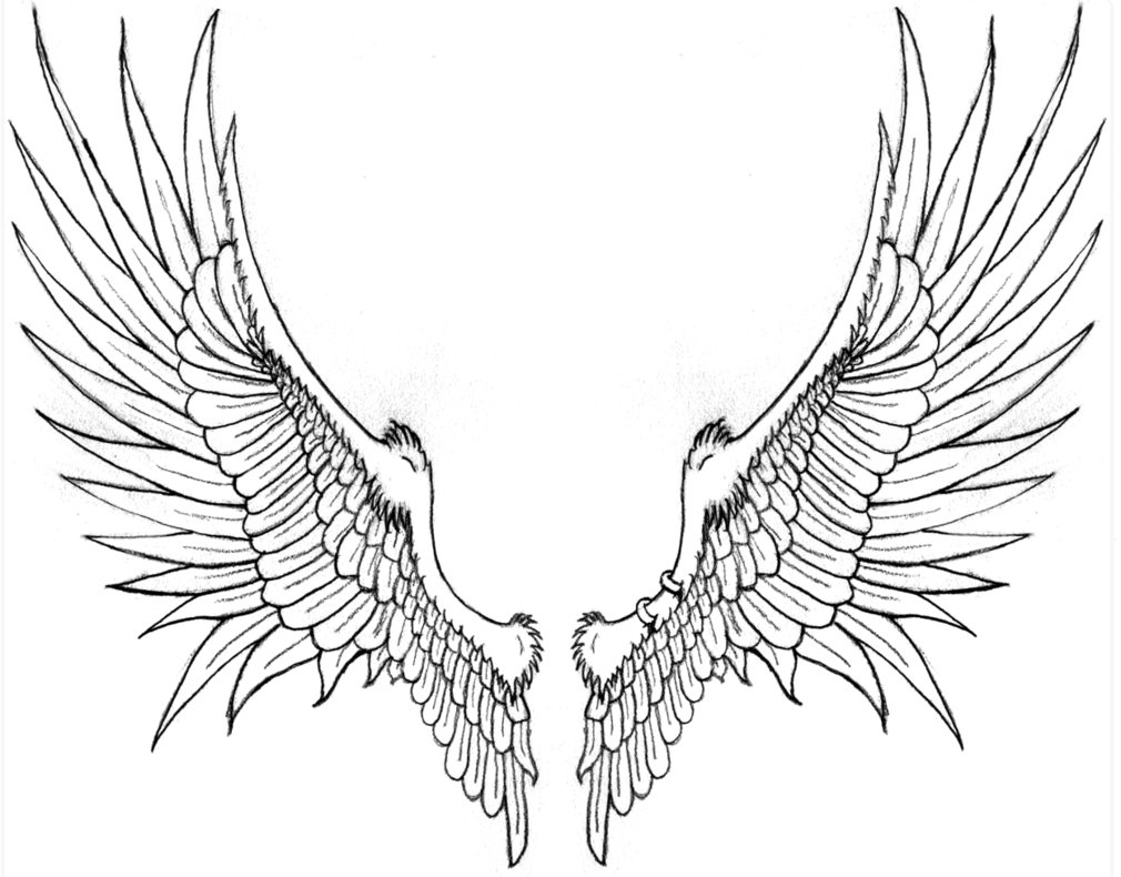 Itu0027s been a long time, but Brack once asked me to draw him a pair · Flame  TattoosWing PlusPng.com  - Wings Tattoos PNG