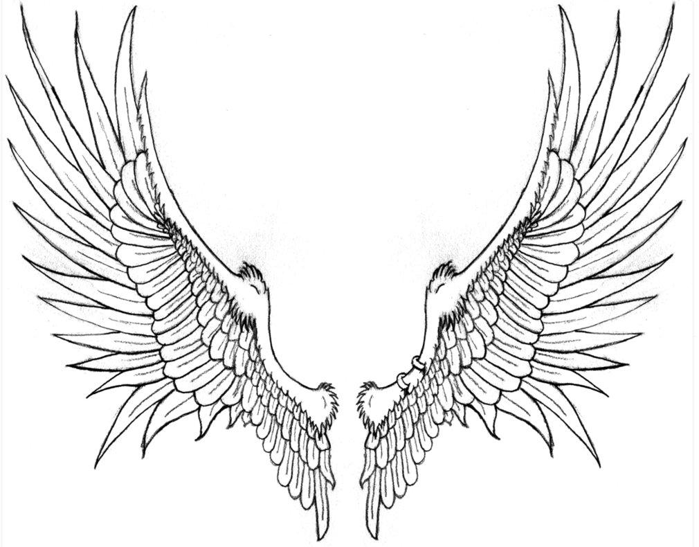 Wings Tattoos PNG - 4618
