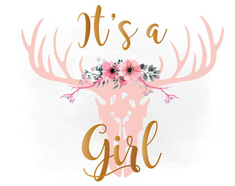 Its A Girl PNG-PlusPNG.com-340 - Its A Girl PNG