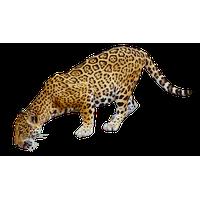 Jaguar Free Png Image PNG Image - Jaguar HD PNG