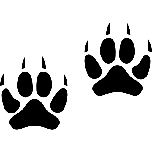 Two Animal Pawprints free icon - Jaguar Paw PNG