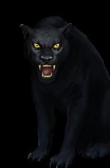 Black Jaguar.png - Jaguar PNG Black And White