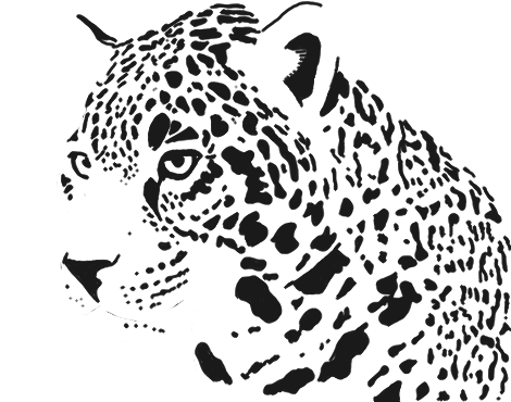 Jaguar Black And White Transparent Jaguar Black And White
