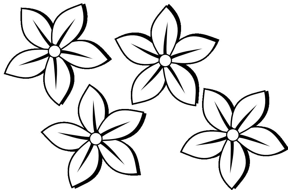 Jasmine PNG Black And White - 49728