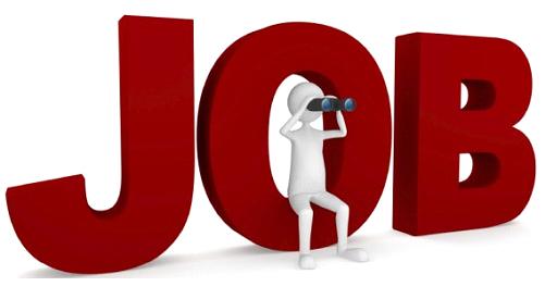 Image Name: Job-Search.png. File Size: 501 x 501 pixels (134954 bytes) - Jobs PNG