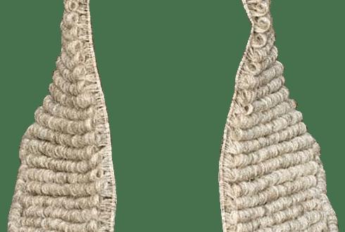 Judge Wig PNG - 53660