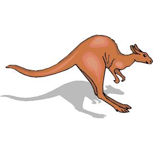 Jumping kangaroo clipart collection - Jumping Kangaroo PNG