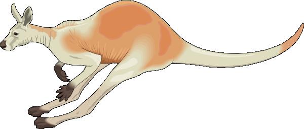 PNG: small · medium · large - Jumping Kangaroo PNG