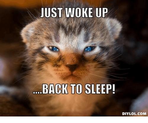 png 500x415 Just woke up meme - Just Woke Up PNG