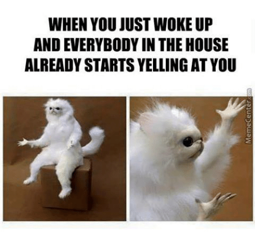 WHEN YOU JUST WOKE UP AND EVERYBODYIN THE HOUSE . - Just Woke Up PNG