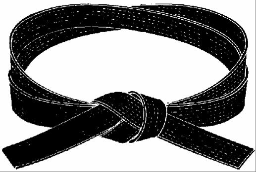 Karate Black Belt PNG - 151769
