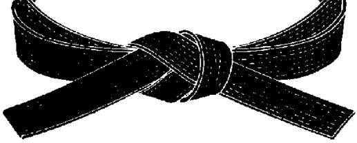 Karate Black Belt PNG - 151755