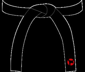 Karate Black Belt PNG - 151760