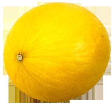 Kavun PNG - 68774