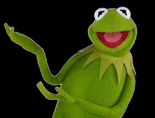 Tumblr n7g35gtYc21rlv2xno1 500.png - Kermit PNG