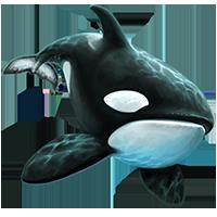 Huge item killerwhale 01.png - Killer Whale PNG