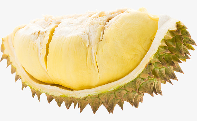 Durian HD, Fruits, Tropical Fruits, Fruit King PNG Image and Clipart