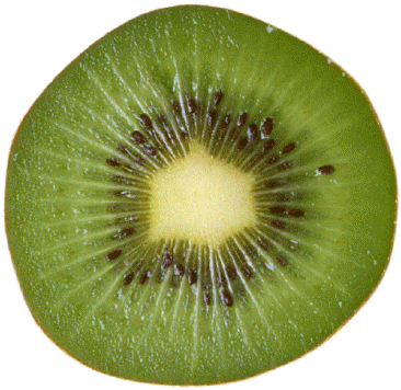 File:Demi kiwi.png - Kiwi PNG