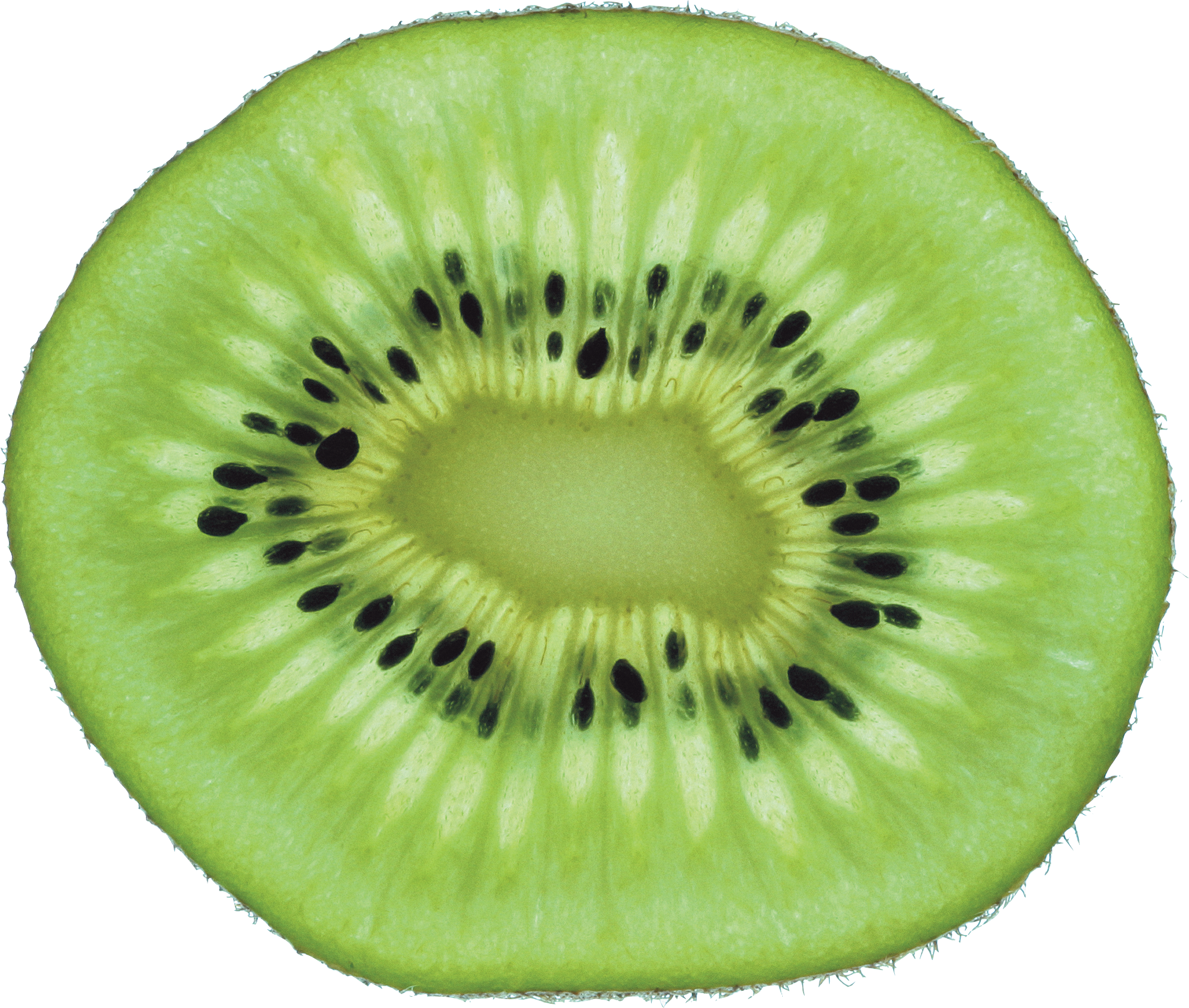 Green cutted kiwi PNG image - Kiwi PNG