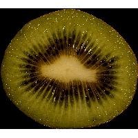 Kiwi Png Image Fruit Kiwi Png Pictures Download PNG Image - Kiwi PNG