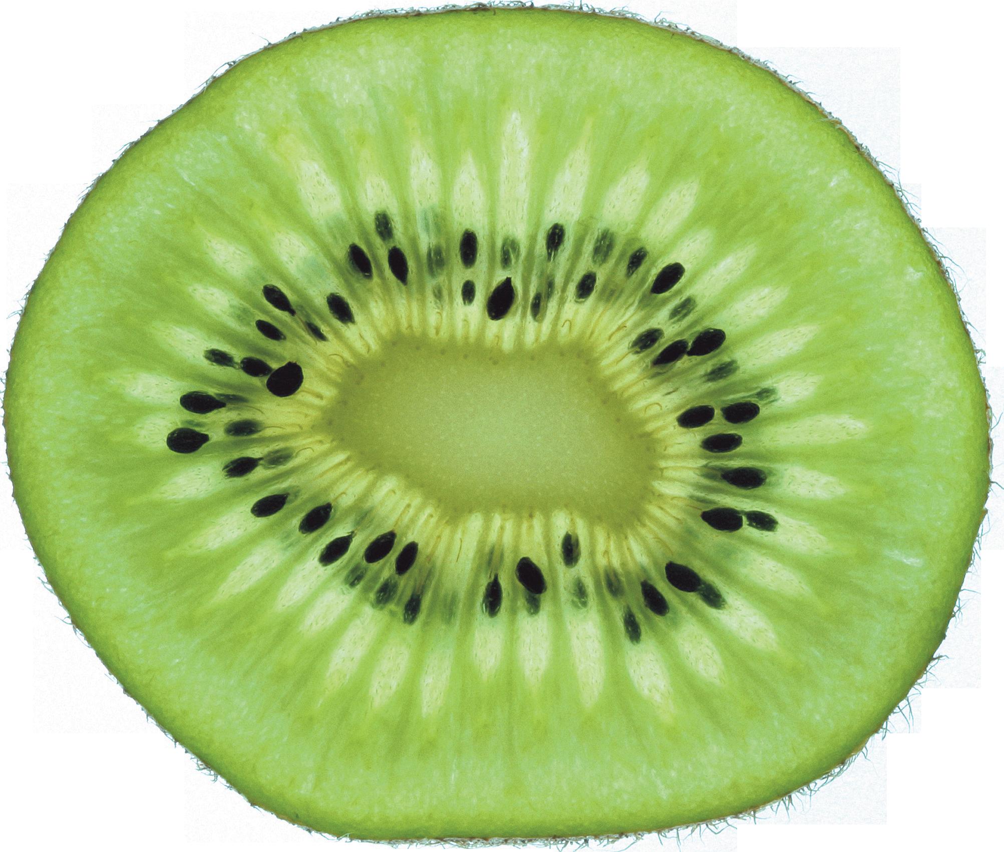 Kiwi Slice PNG - 44560