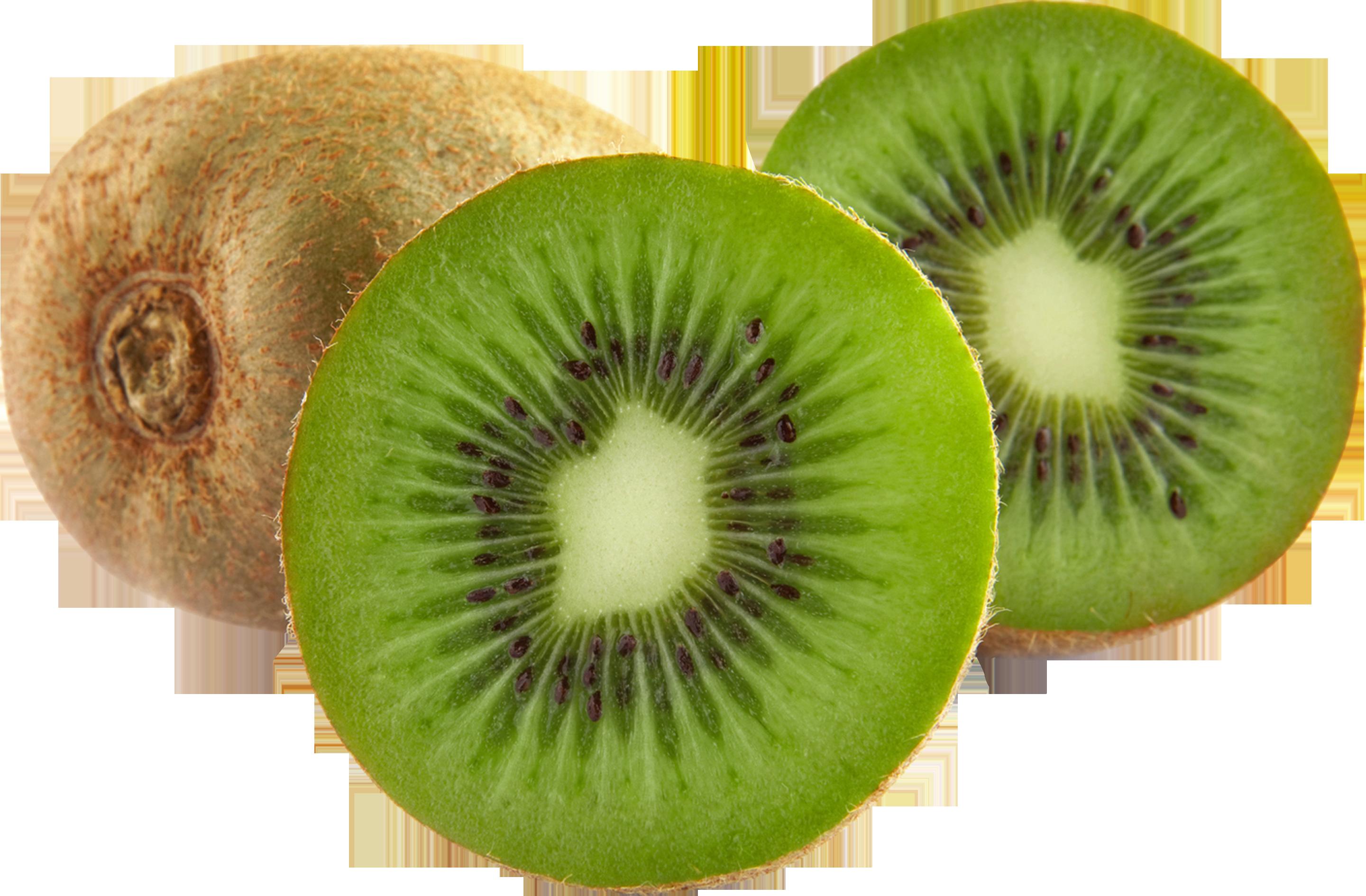 Kiwi Slice PNG - 44564