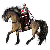 Knight PNG - 8743