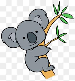 animal koala pull away, Koala, Koala Bear, Png Picture PNG Image and Clipart - Koala PNG HD