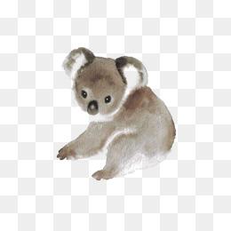 hand painted watercolor tree bag bear material, Koala Bear, Hand-painted  Koala, - Koala PNG HD