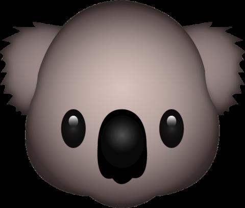 Koala PNG Images - 42908