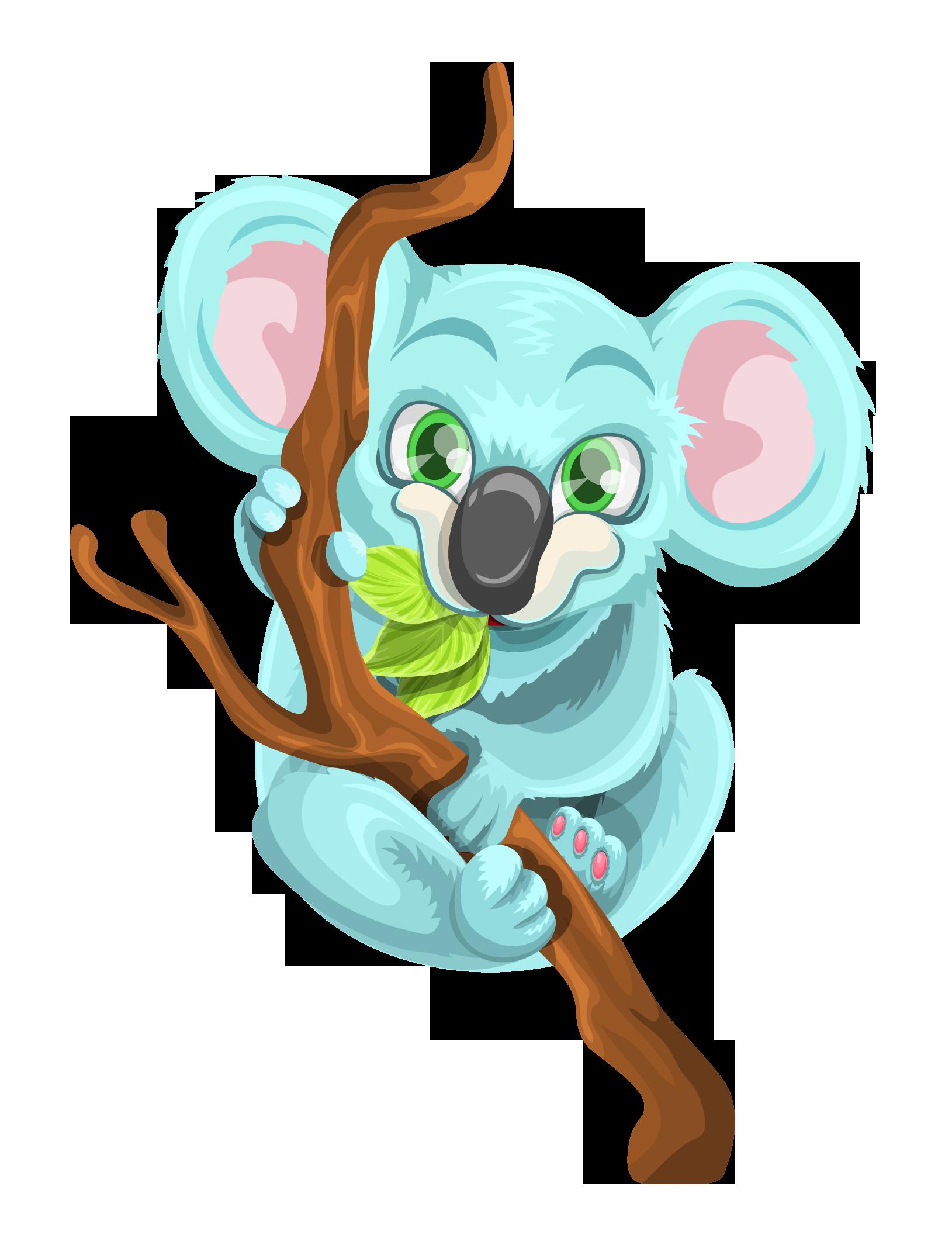 Koala PNG Images - 42911
