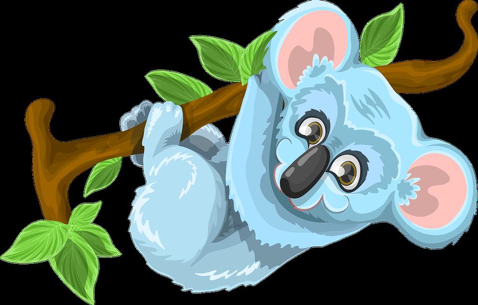Koala Tree PNG - 42873