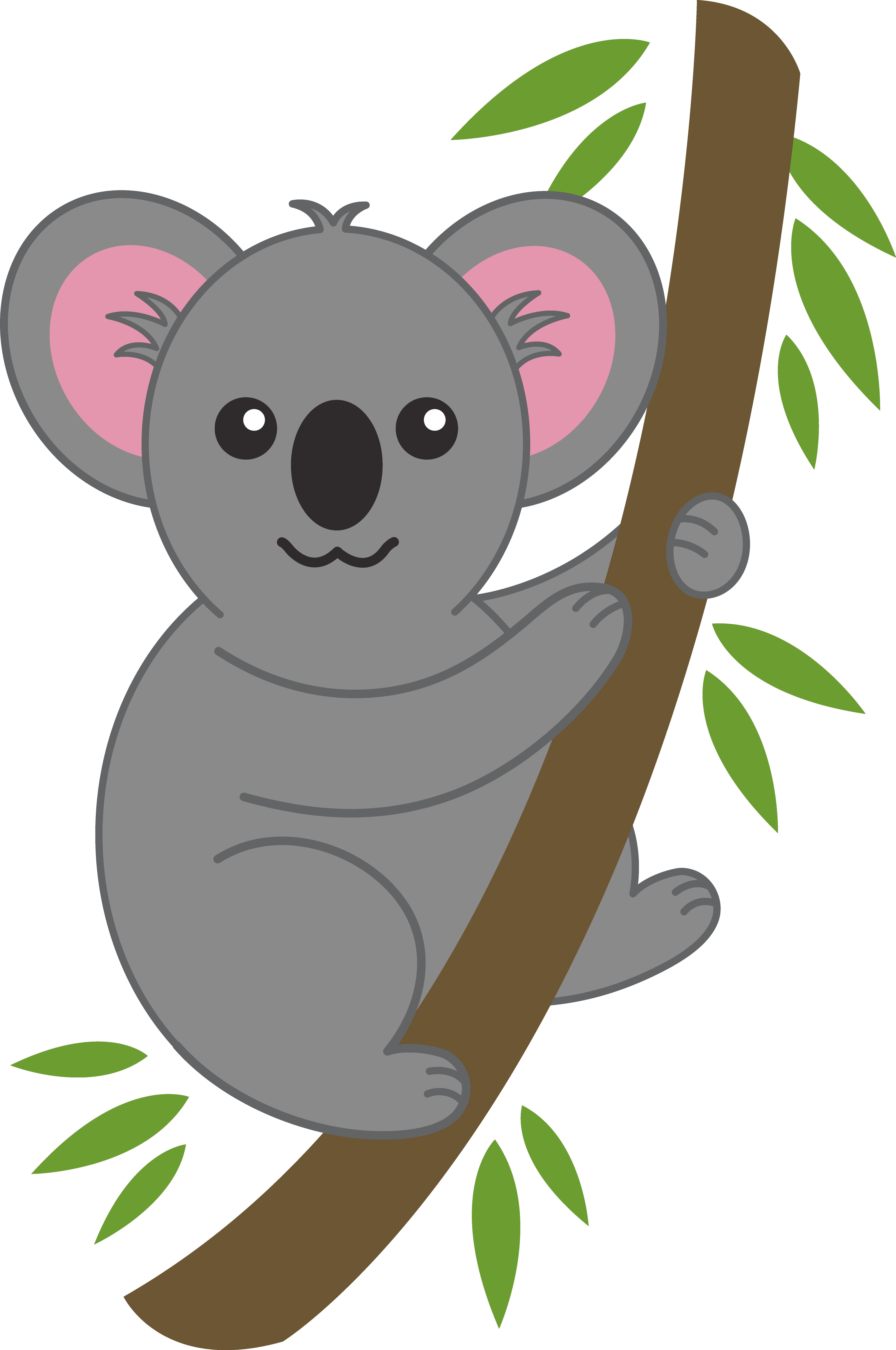 Koala Tree PNG - 42870