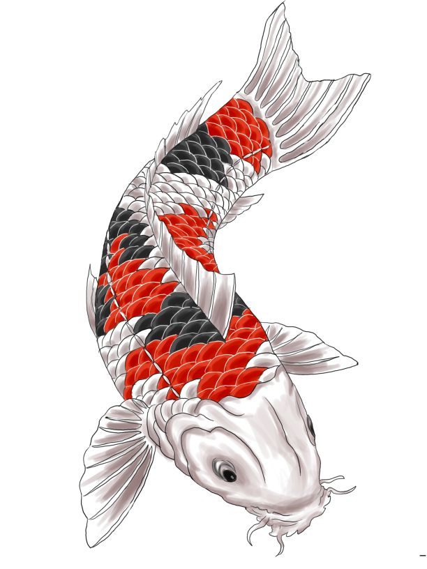 Koi Fish PNG HD - 127787