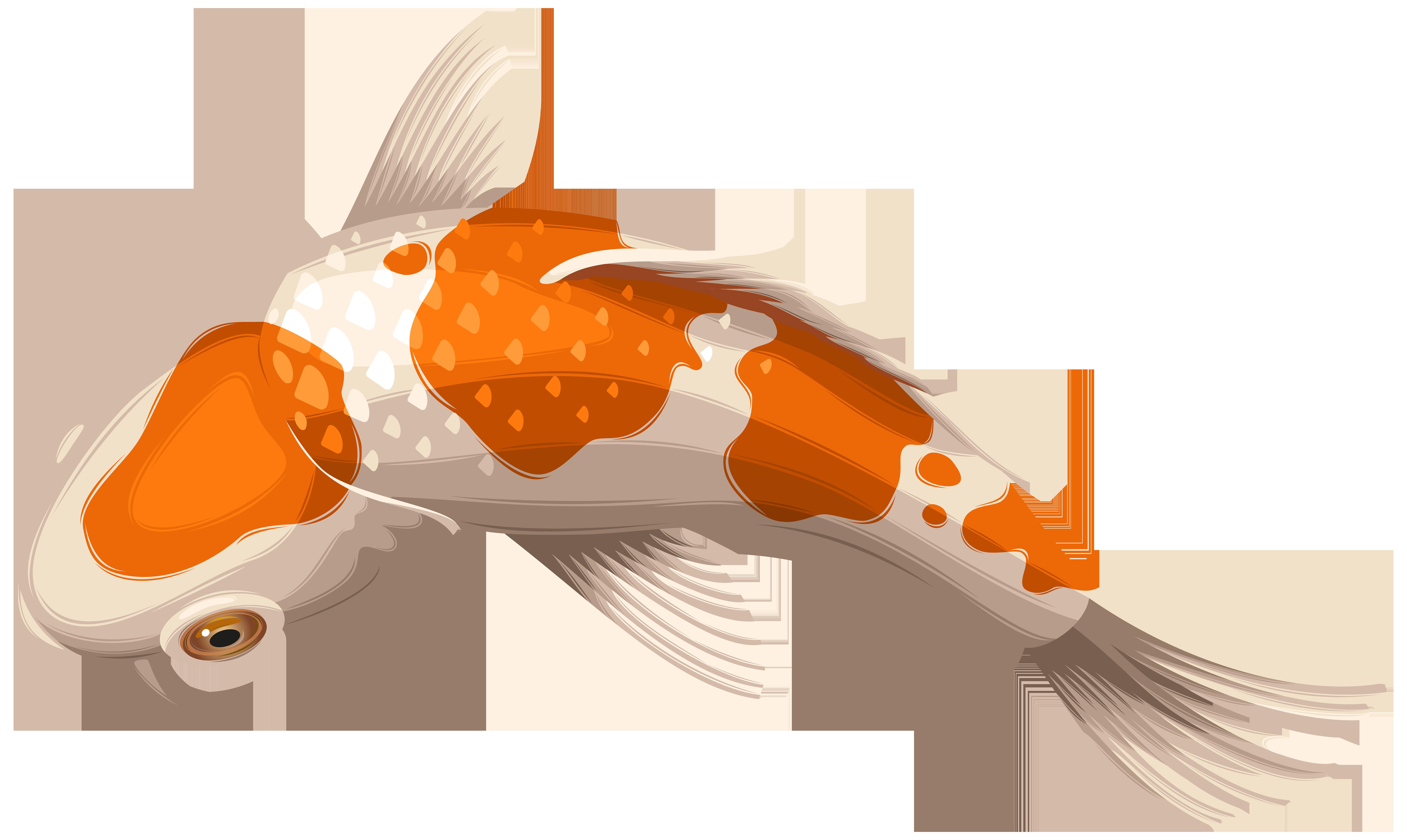 Koi Fish PNG HD