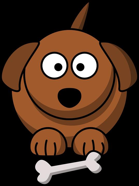 Koira, Luu, Brown, Kasvot, Söpö, Rasvaa, Pentu, Pet - Koira PNG
