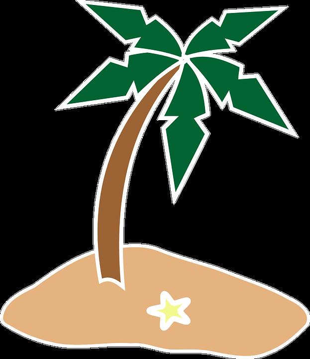 Palme, Kokospalme, Insel, Seestern, Sommer, Urlaub - Kokospalme PNG