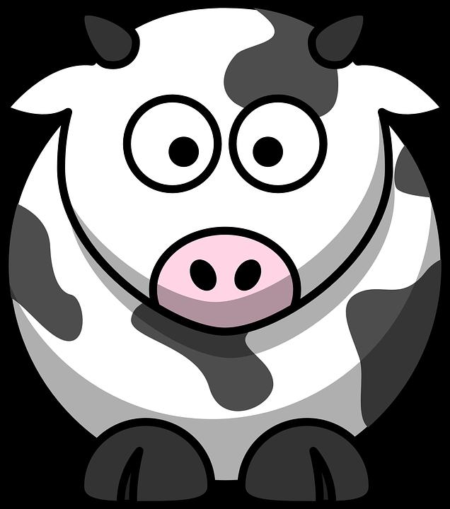 Kuh, Milch, Landwirtschaft, T
