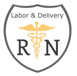 Make Sure Your Law Firm Employs An In-House Labor and Delivery Nurse - Labor Birth PNG