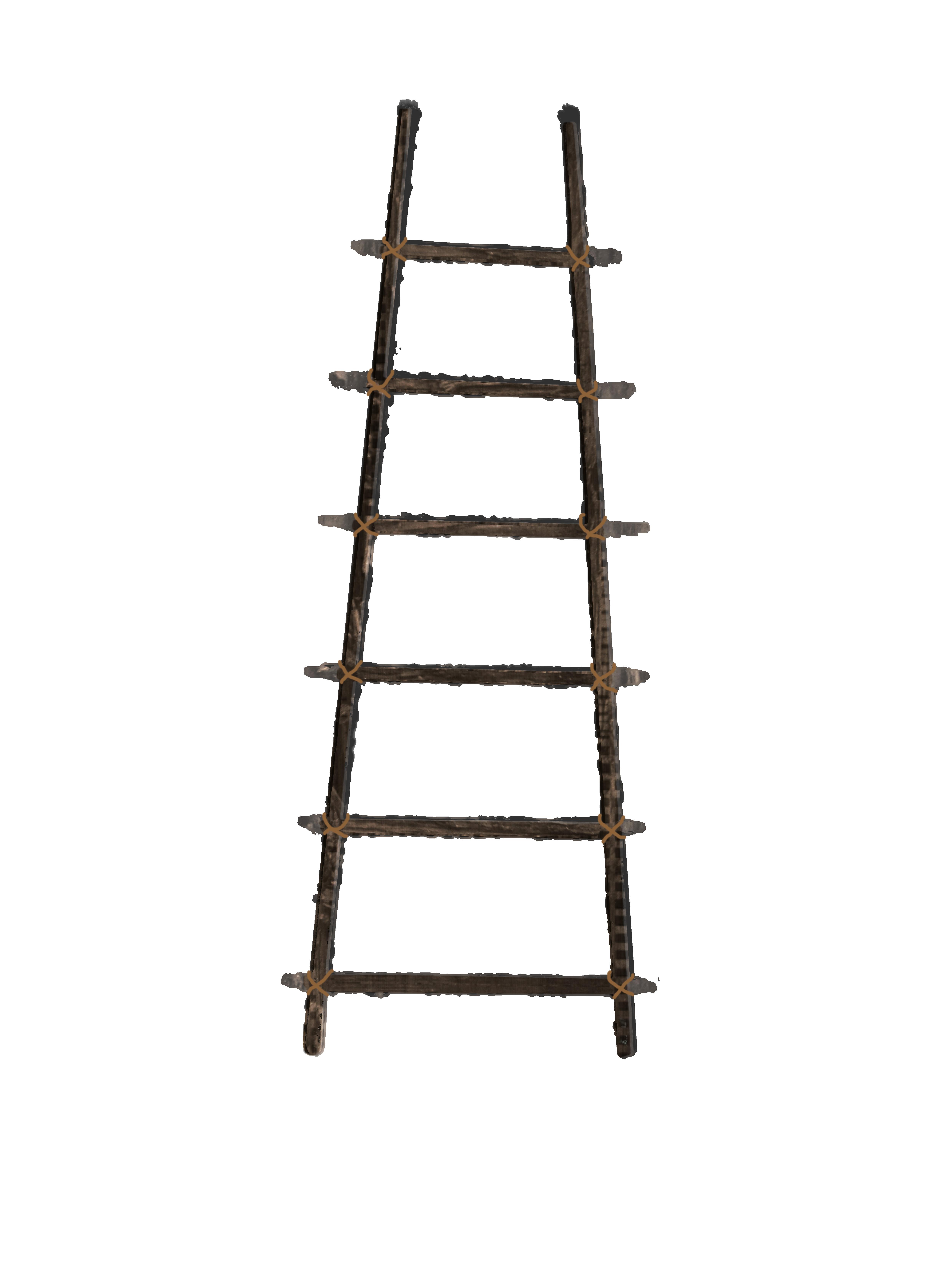 Ladder Hd Png Transparent Ladder Hd Png Images Pluspng
